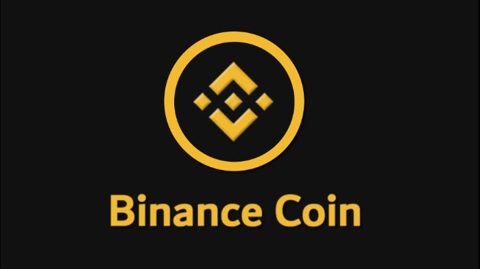 Binance Coin - Criptovaluta
